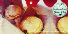 Recette des muffins à la vanille coeur pâte à tartiner sans gluten et sans lactose